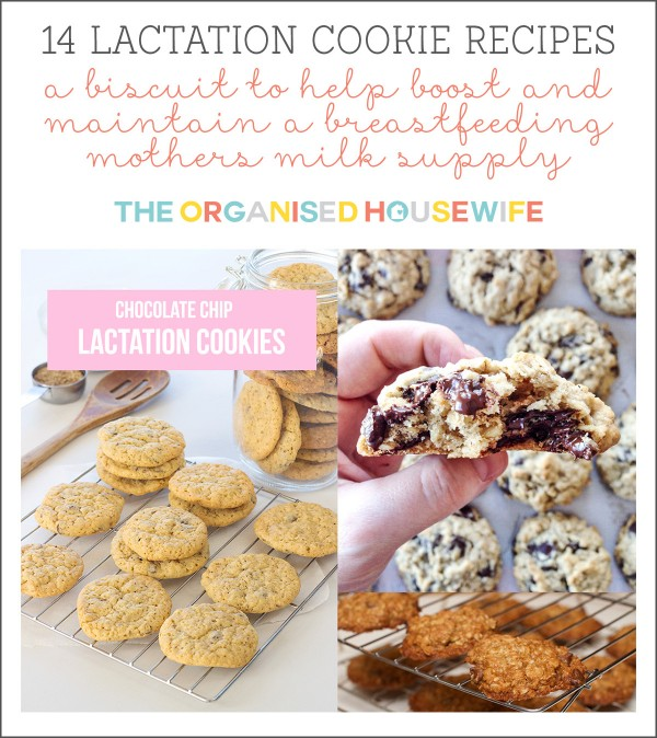 14 lactation cookie biscuit recipes