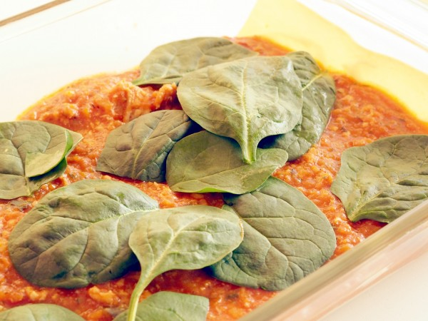 This Chicken and Sweet Potato Lasagna is a great twist on the traditional beef lasagna, with the delightful addition of vegetables hidden inside, carrots, zucchini, capsicum, onion, sweet potato and spinach.