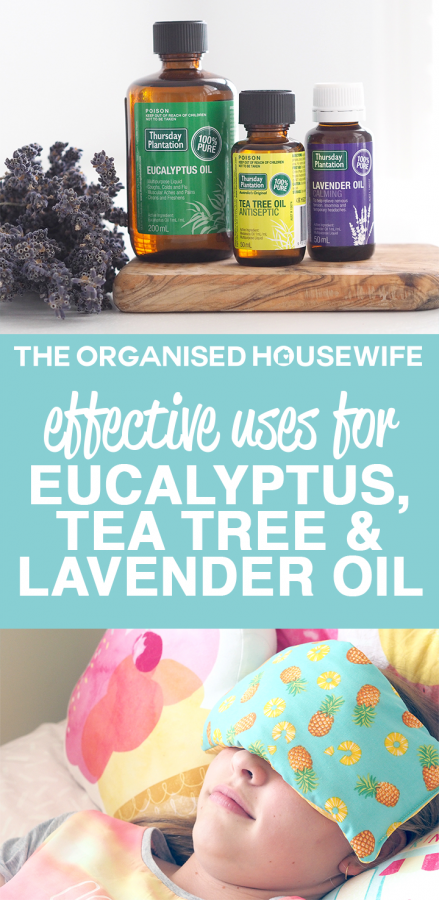 I've put together my little list of therapeutic uses for Eucalyptus, Tea Tree and Lavender Oil in the home. There are endless uses, the list could go on and on, especially when you add in household benefits as well..