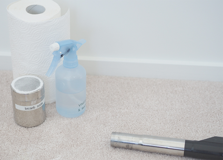 Easy and effective Homemade Carpet Cleaner for Pet Stains, to remove any messes and odours.