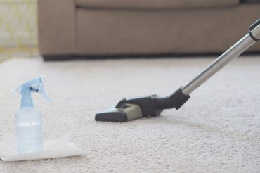 DIY-Carpet-Cleaner---Pet-Stains-FEATURE