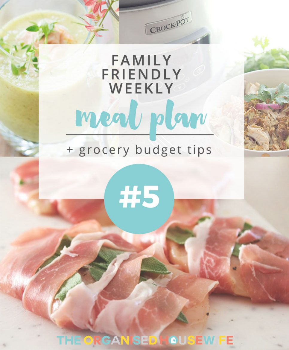 Being prepared for the week can mean you shave down cooking/planning time and can enjoy more of the things you love (like Netflix and napping!) Here is weekly meal plan #5.