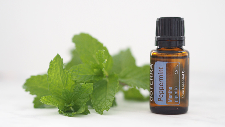 Peppermint essential oil is not only renowned for its fresh flavour, it can help alleviate headaches, stomach upset, promotes healthy respiratory function and helps sooth burnt areas by providing a cooling sensation.