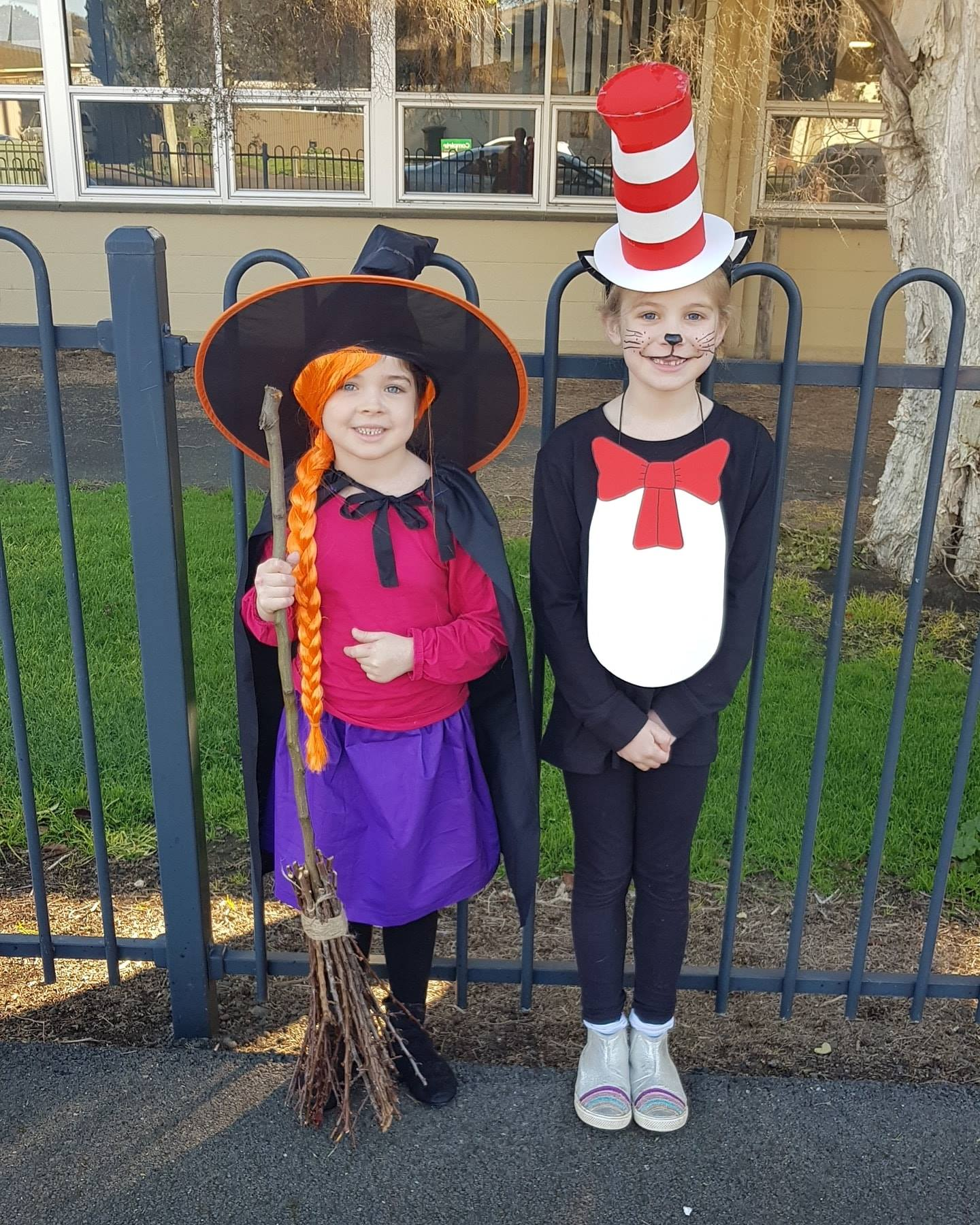 Room on the Broom and Dr Seuss Cat in the Hat Book Week 2019 Costume Ideas