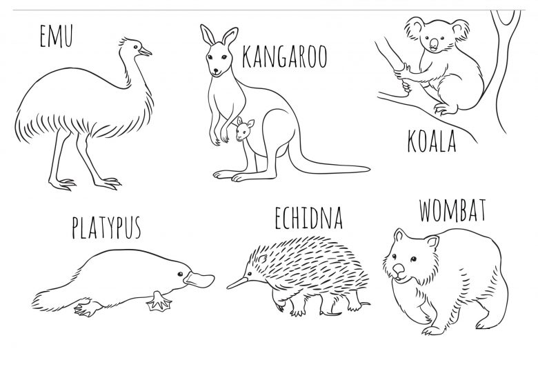 Native Australian animals colouring in printable