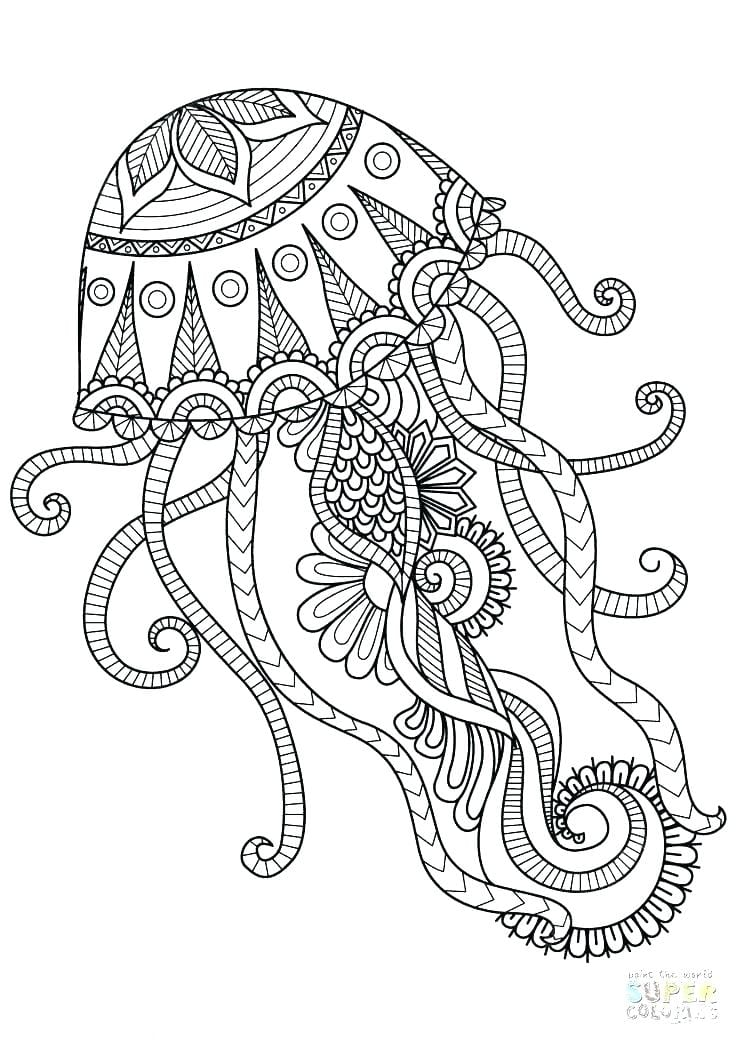 Octopus colouring in page for Australia Day