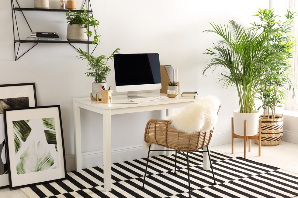 Bright home office with plants