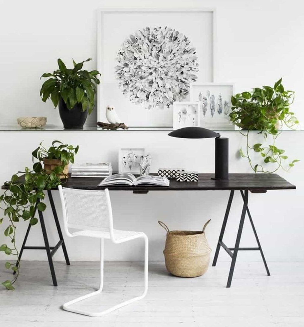 Green plants in home office better focus