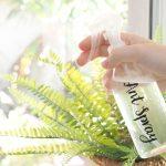 DIY Ant Repellent Spray
