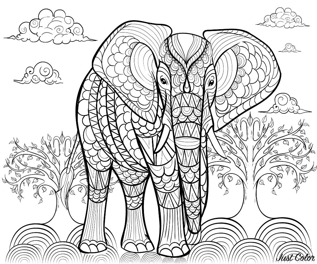 Elephant colouring in page for children and teens