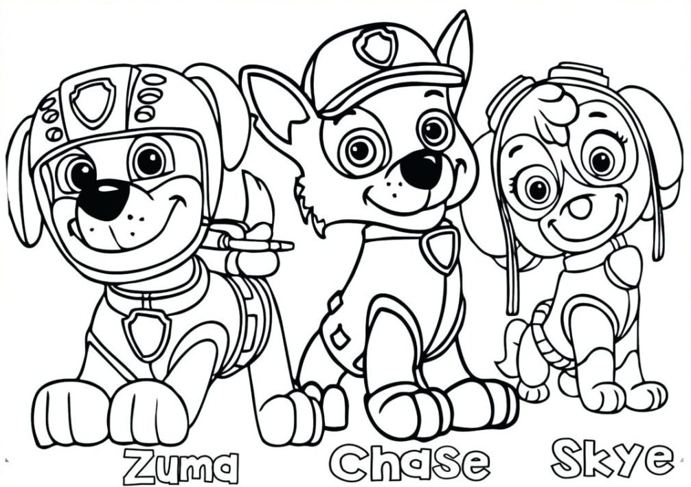 print paw patrol colouring page for kids