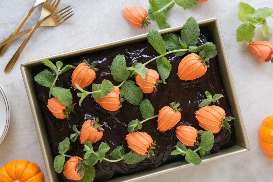 Chocolate pumpkin patch cake recipe