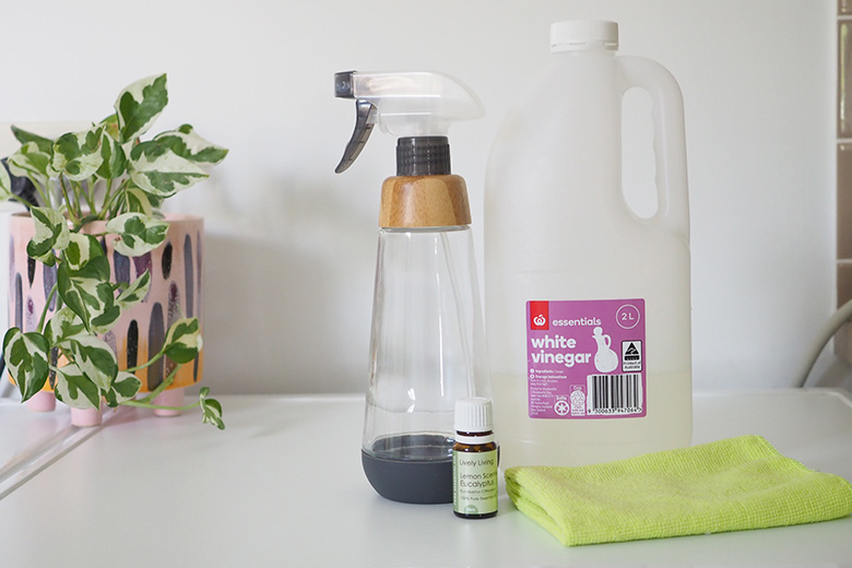 DIY Natural Front Loader Cleaning Spray