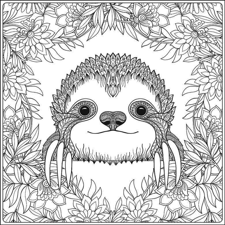 sloth colouring in page free printable