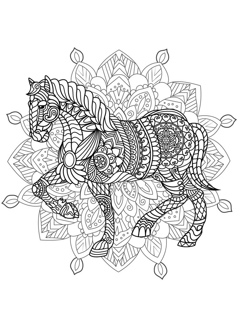 horse adult colouring in page