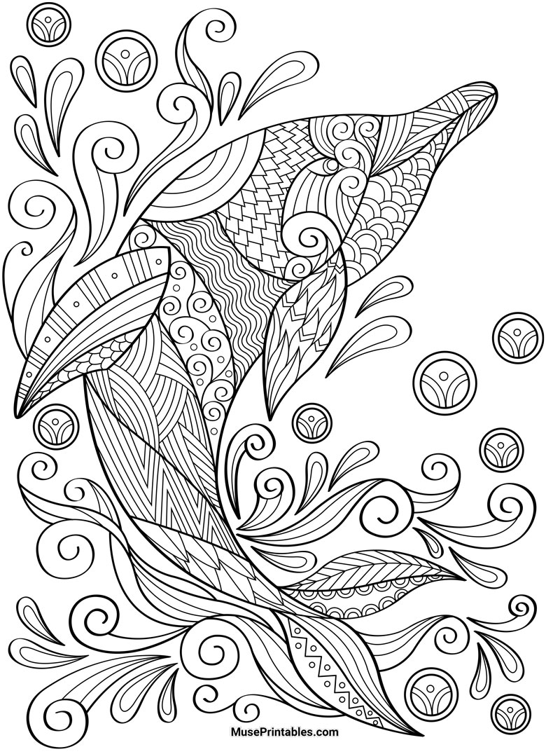 free adult dolphin colouring in page
