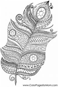 feather colouring in page free