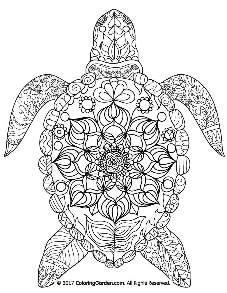 free printable turtle colouring in page