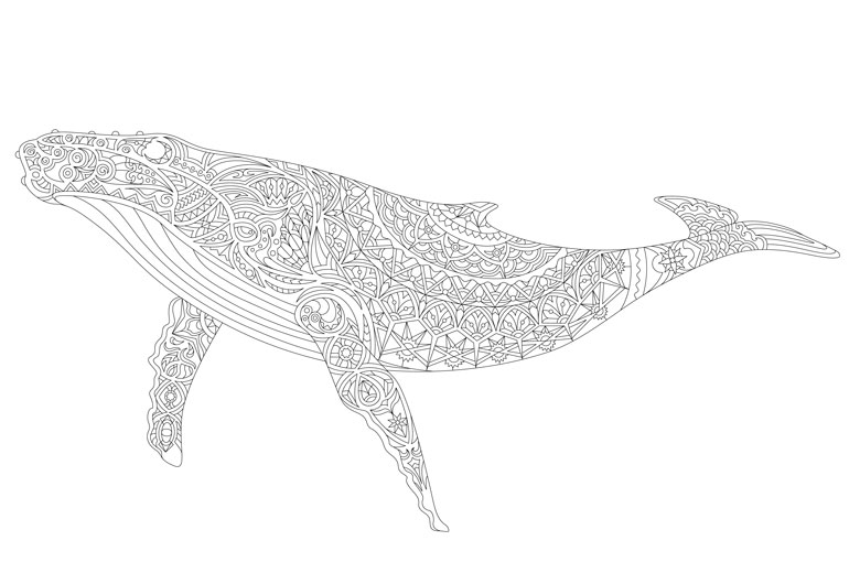 free printable whale colouring in page for adults