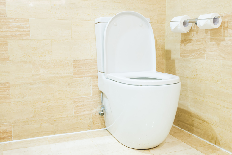 how to remove hard water mineral scale from toilets